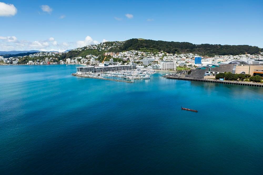 Wellington (Foto: Divulgação)