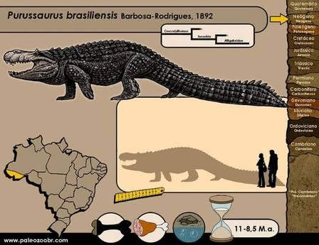Purussaurus viveu na Amazônia Foto: Reprodução/Facebook(Paleozoo Brazil)