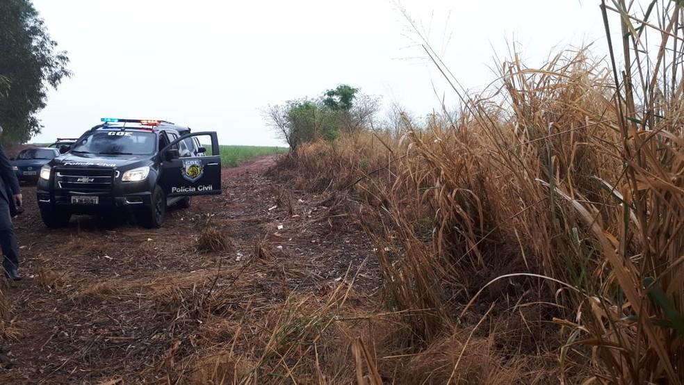 Corpo de Mariana foi encontrado em canavial (foto: Polícia Civil)