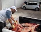 Vigilância Sanitária apreende 171 kg de carne clandestina em Teresina