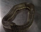 """Vídeo mostra cobra-rei """"estressada"""" regurgitando a própria cauda"""