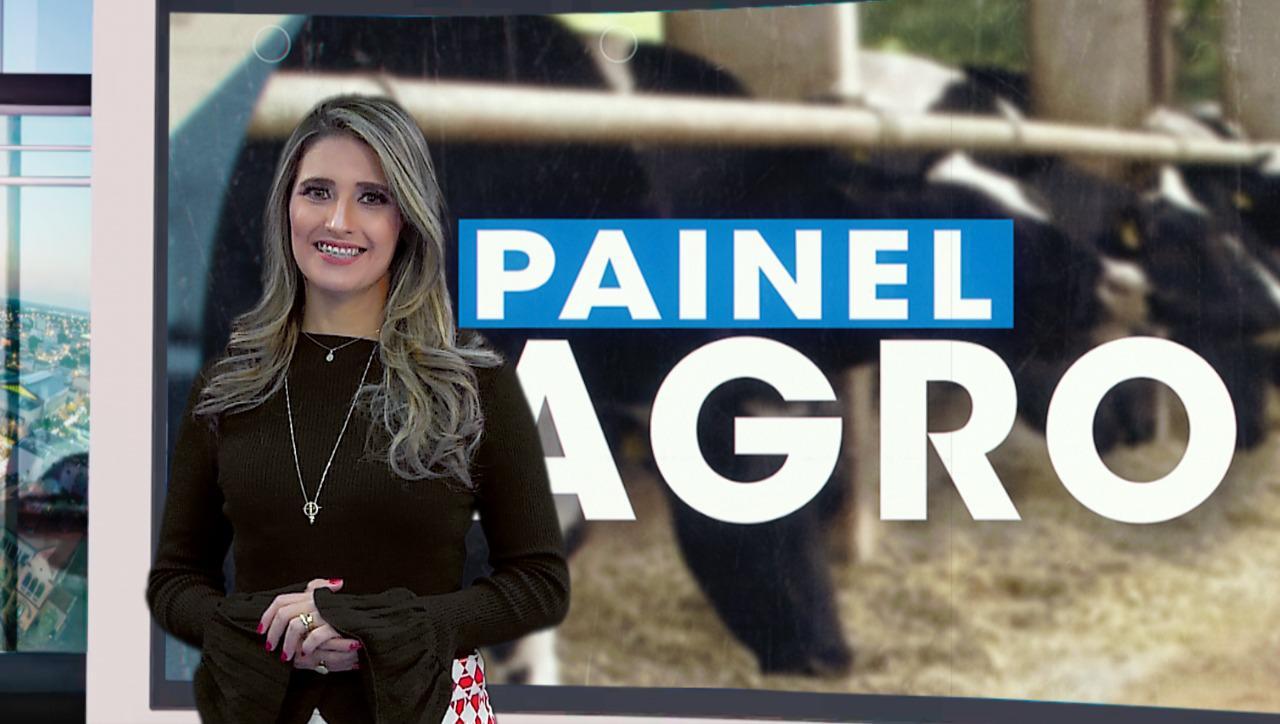 Crédito: TV Jornal.