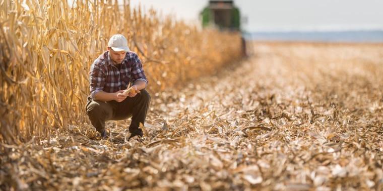 Seguro Rural alcança marca de um milhão de apólices contratadas