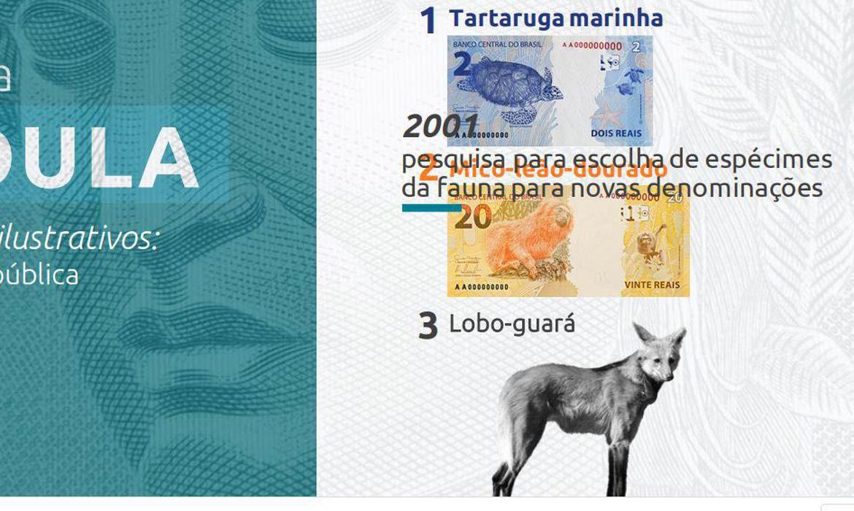 Nova cédula de R$ 200 entra em circulação na quarta-feira (02) - Imagem 3