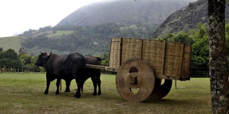 16ª edição de Feira de Turismo Rural tem início nesta terça-feira (1º)