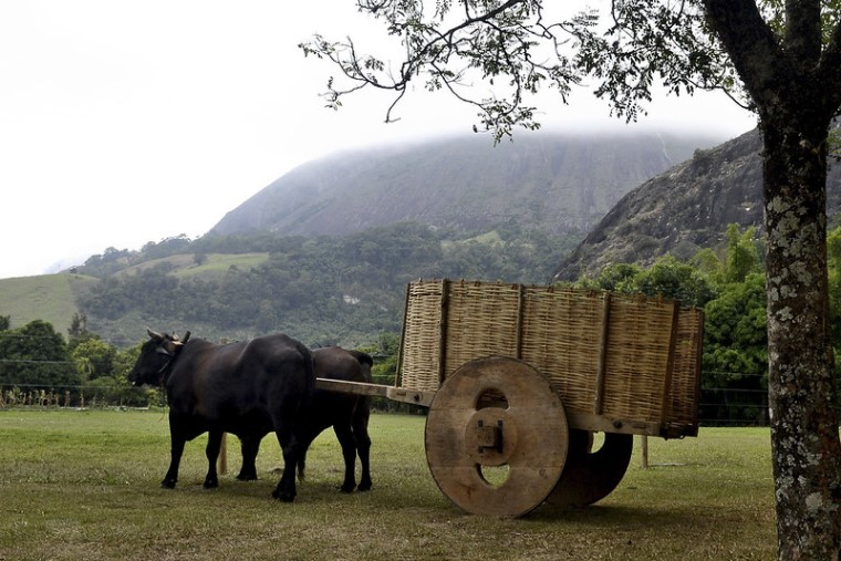 16ª edição de Feira de Turismo Rural tem início nesta terça-feira (1º) - Imagem 1