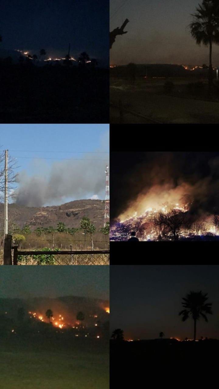 Incêndio atinge região próxima a sítios arqueológicos no Piauí - Imagem 1