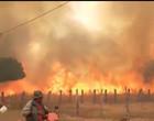Incêndio de grandes proporções atinge a caatinga na Paraíba; assista