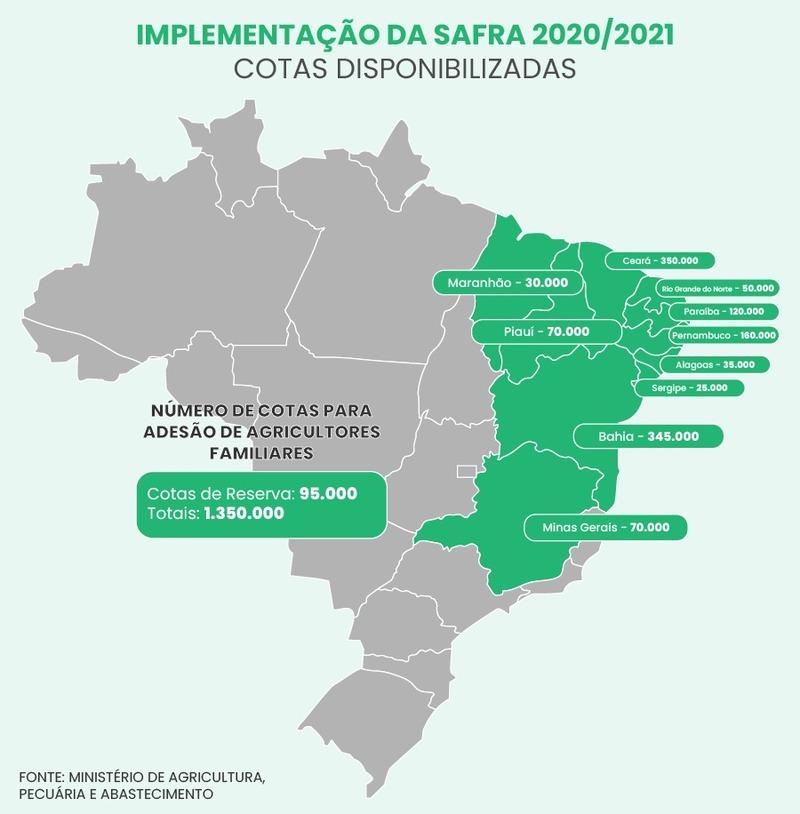 Arte Brasil61