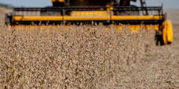 Produção agropecuária deve passar de R$ 770 bi e tem recorde histórico