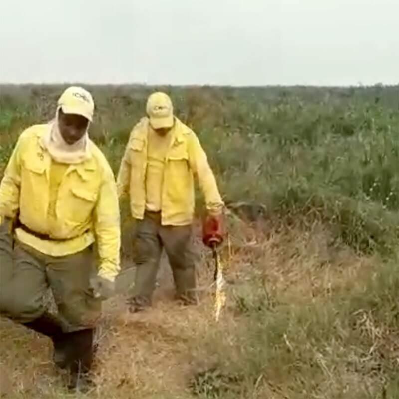 Brigadista coloca fogo no Pantanal - Foto: Reprodução