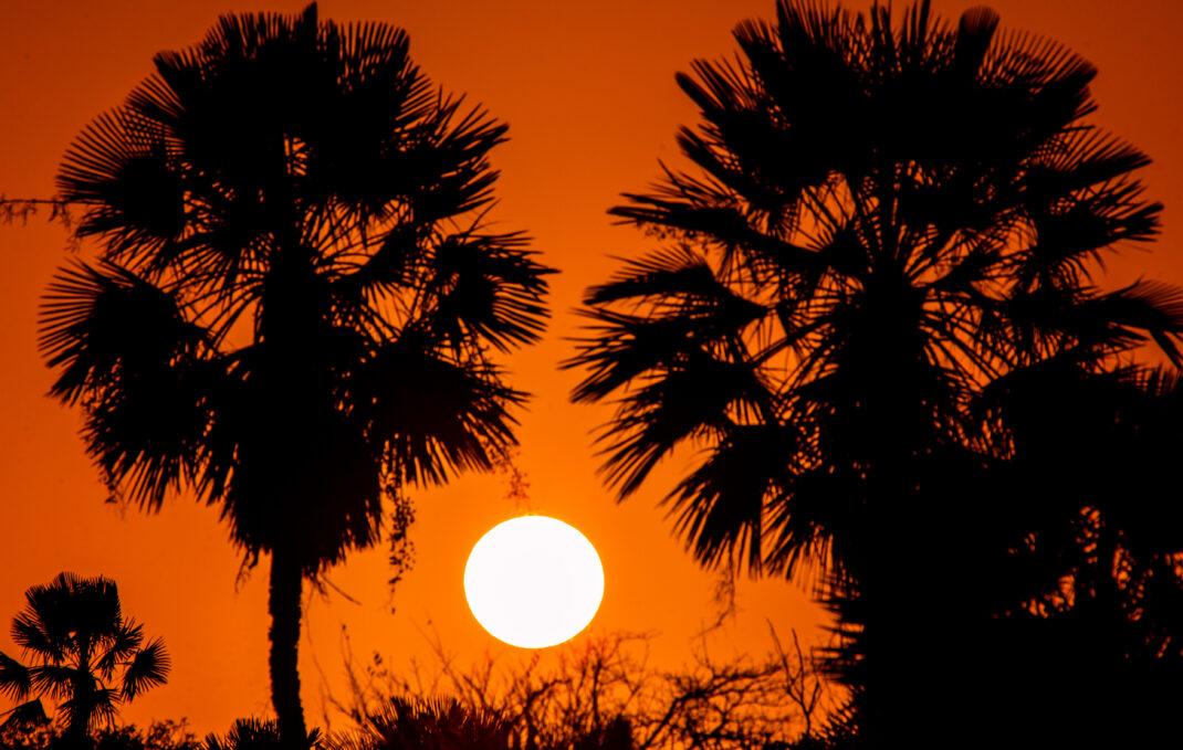 Nascer Do Sol em Parnaíba/PI – Crédito obrigatório: Chico Rasta/MTur