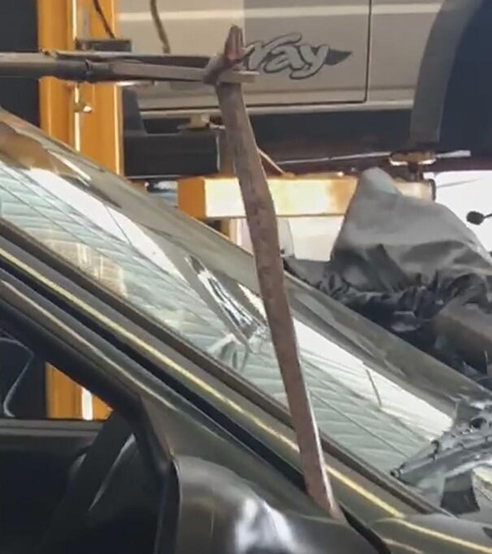 Cobra é encontrada dentro de carro durante conserto em oficina; vídeo  - Imagem 1