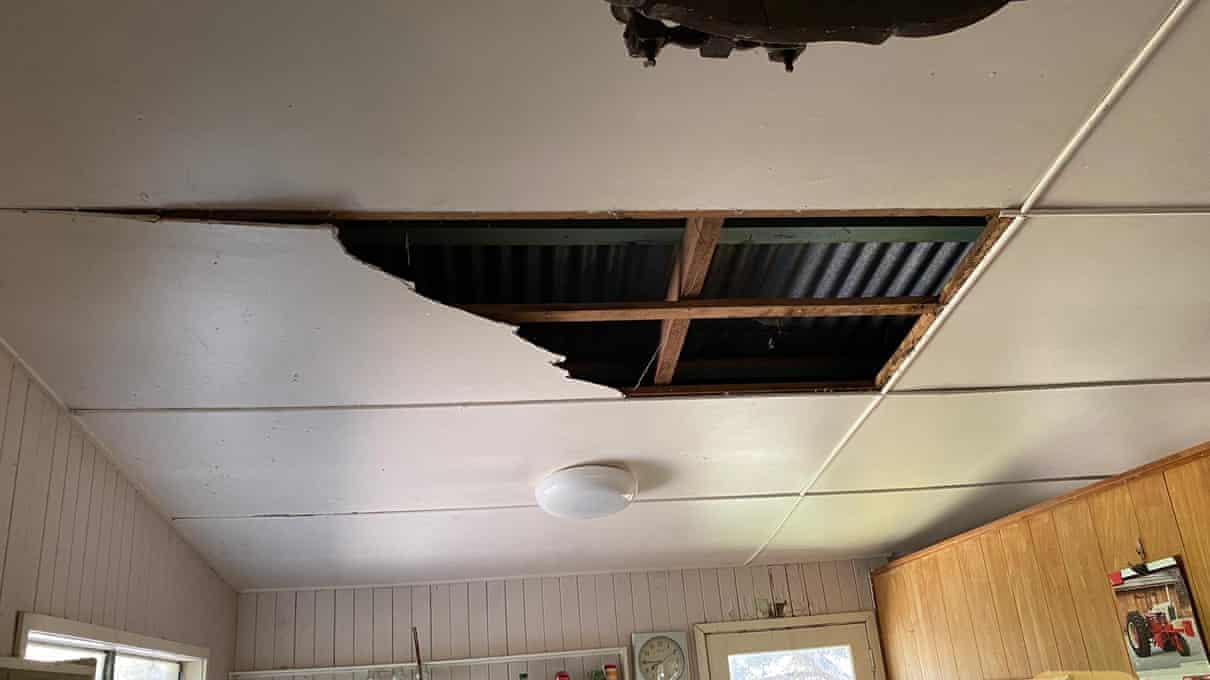 A placa de compensado do teto se quebrou com o peso das cobras-Reprodução/The Guardian