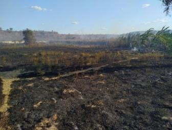 Incêndio de grandes proporções destrói área do campus do IFPI em Oeiras