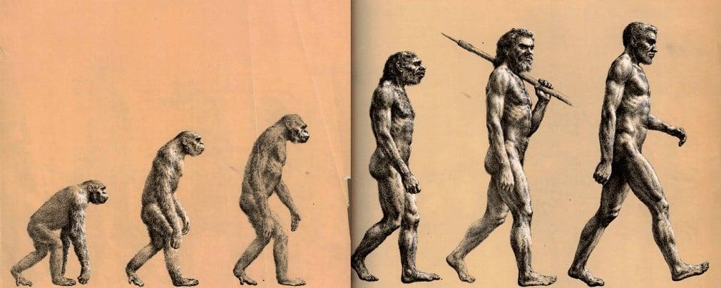 Estrada até o Homo Sapiens (Imagem: reproddução BBC)