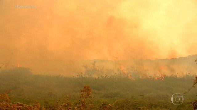 PF suspeita de açao criminosa em fazendas do Pantanal - Foto: Globo