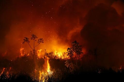 PF encontra caminho de fogo no Pantanal