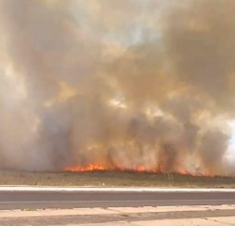 Incêndio em fazenda no bairro Santa Maria da Codipi em Teresina