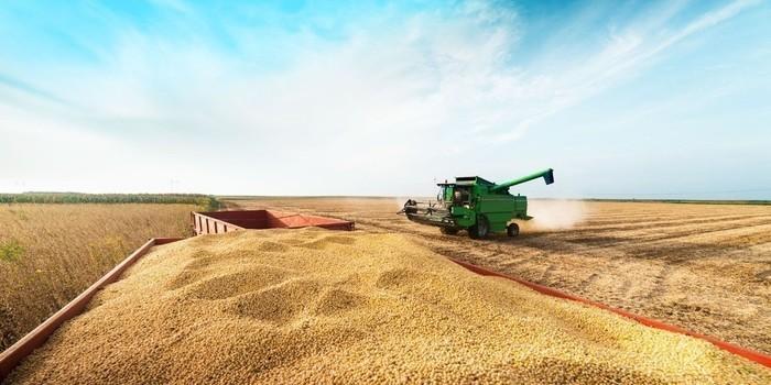 Piauí encerra safra com recorde histórico de produção de grãos