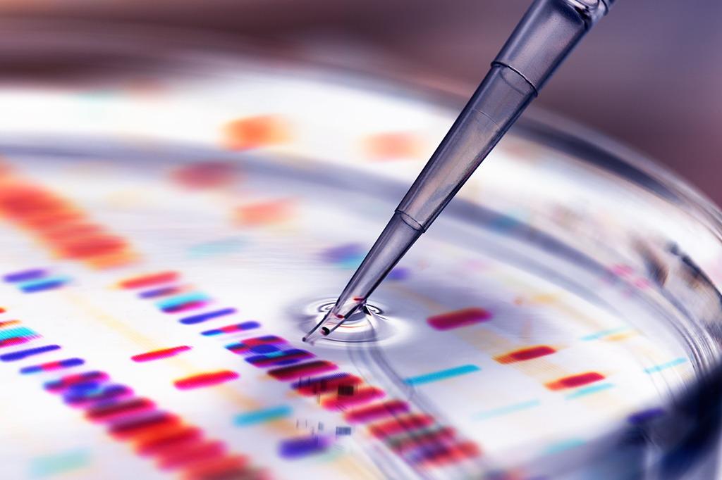 Genes podem gerar resposta imune à Covid-19 na América do Sul