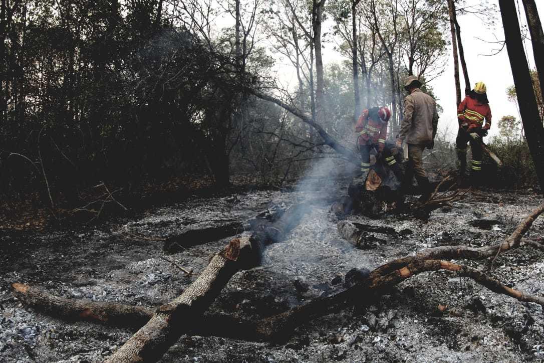 PF já tem provas para indiciar fazendeiros por queimadas no Pantanal - Imagem 1