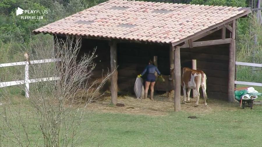 Stéfani Bays se irrita por não receber ajuda de peões para alimentar animais