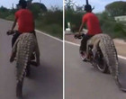 Traficante de animais é visto levando crocodilo de 2,5 metros em moto