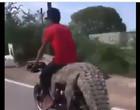 Homens caçam crocodilo e transportam animal em motocicleta; Vídeo
