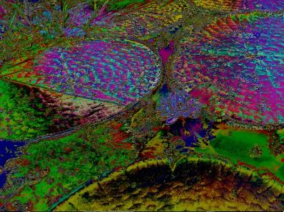 Amazônia: Veja artes inspiradas na maior floresta tropical do mundo - Imagem 2
