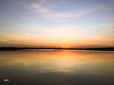 Amazônia: Veja artes inspiradas na maior floresta tropical do mundo - Imagem 1