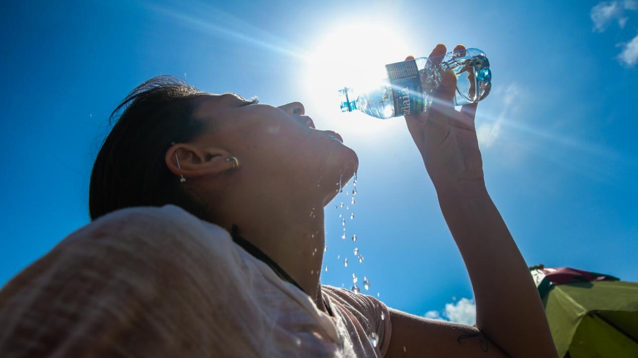 O recomendado é que a umidade relativa do ar gire em torno de 50% a 60%.