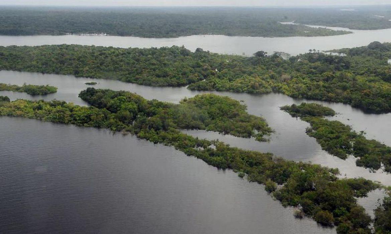 Amazônia (Foto: Valter Campanato/Agência Brasil)