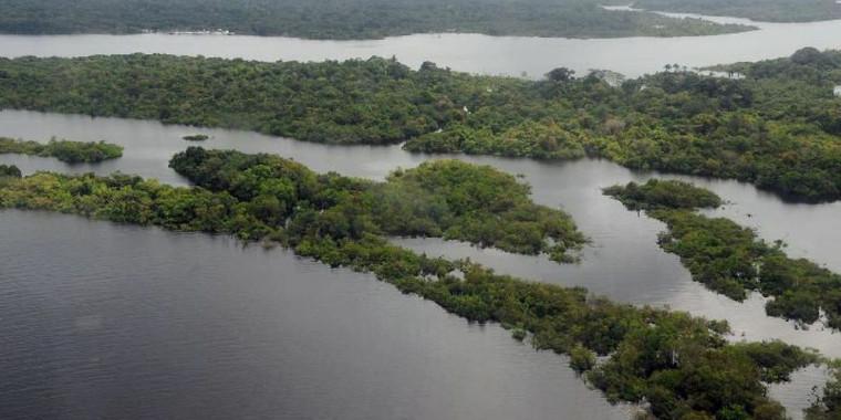 Dia da Amazônia: mulheres agricultoras falam sobre preservação