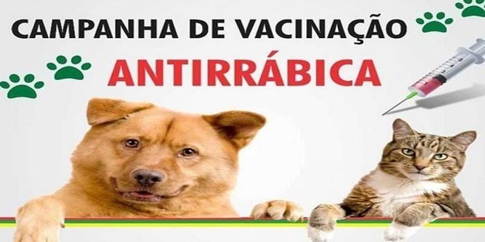 Milton Brandão: Município realizará sábado (23) campanha de vacinação Antirrábica