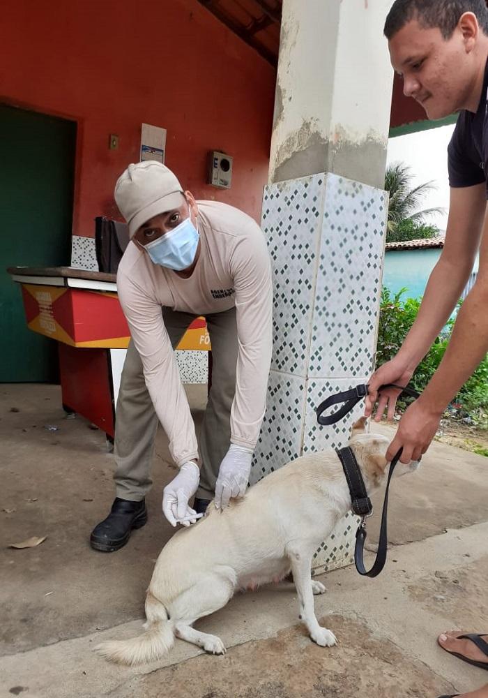 Milton Brandão: Município realiza campanha de vacinação antirrábica que seria em novembro de 2020 só agora está sendo realizada  - Imagem 3