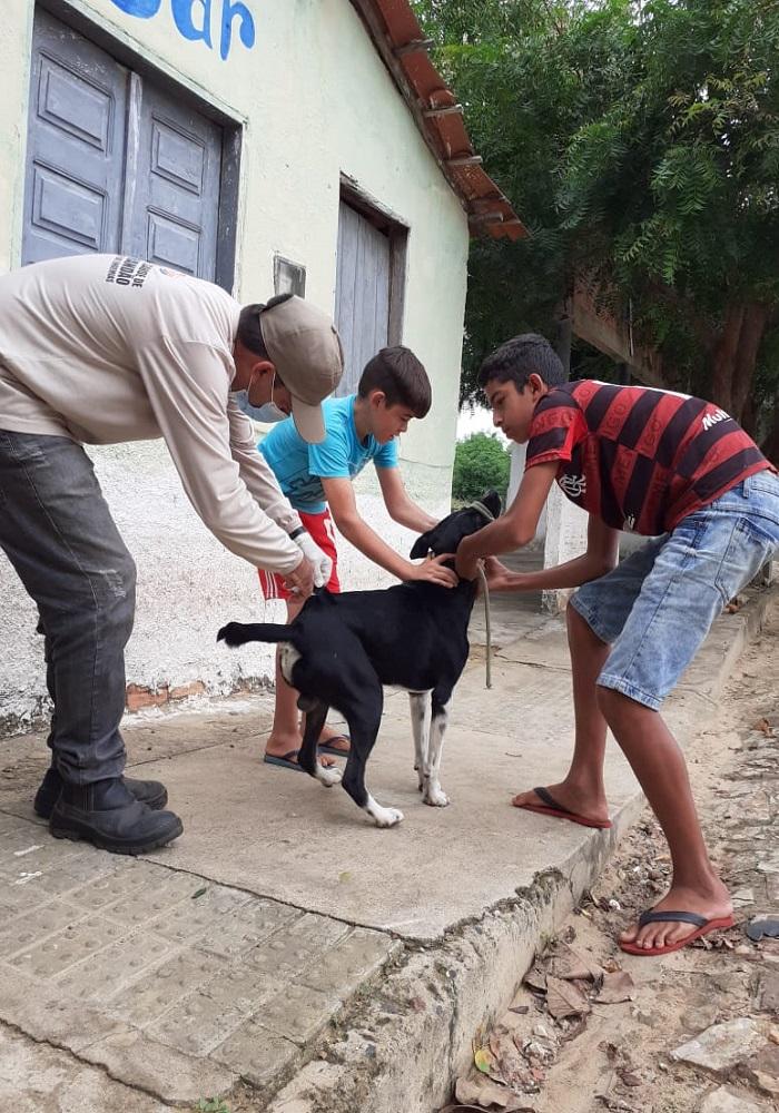 Milton Brandão: Município realiza campanha de vacinação antirrábica que seria em novembro de 2020 só agora está sendo realizada  - Imagem 8