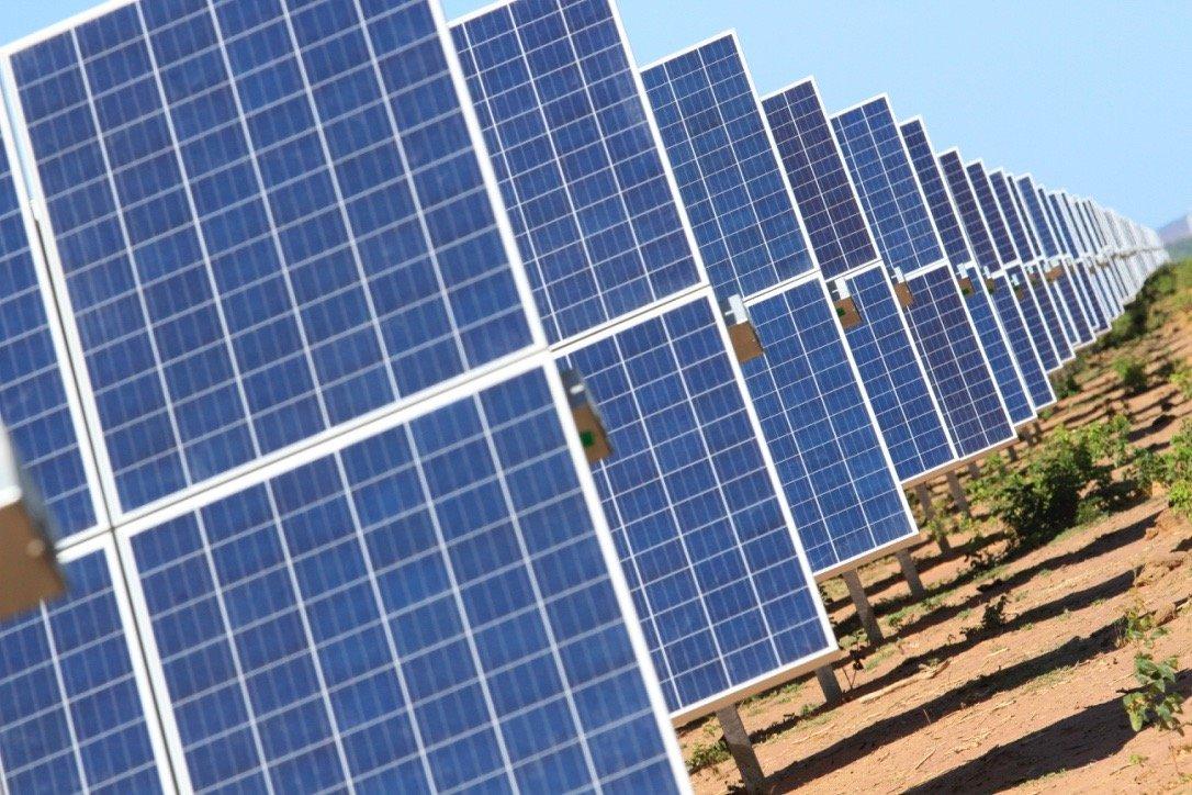 Luiz Gonzaga Beluzzo prega urgência no uso de energias renováveis - Imagem 2