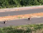 """Vídeos flagram motociclistas """"dando grau"""" na Via Sul"""