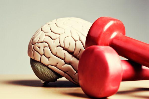 Conheça os benefícios do exercício físico para o cérebro - Imagem 1