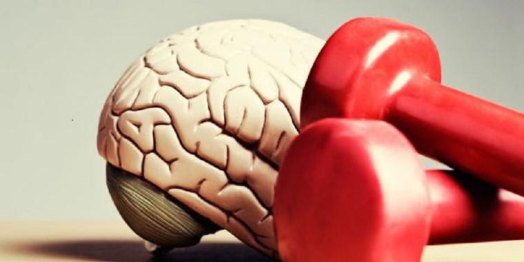 Conheça os benefícios do exercício físico para o cérebro