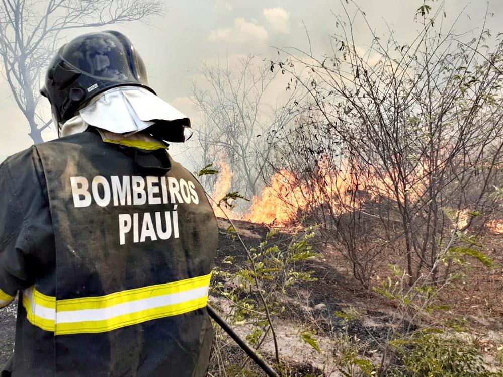 Discutir ações emergenciais, além de cobrar um planejamento para reduzir esses índices alarmantes - Foto: Ascom