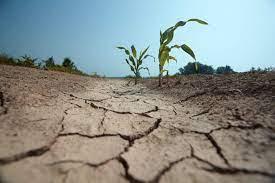 Autoridades se mobilizam para tentar barrar a críse hídrica. (Foto: Reprodução)