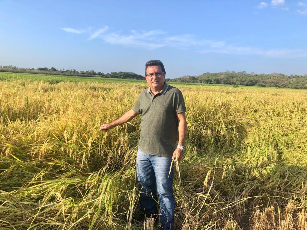 Prefeito Genival Bezerra visita campo de produção arroz - Imagem 4