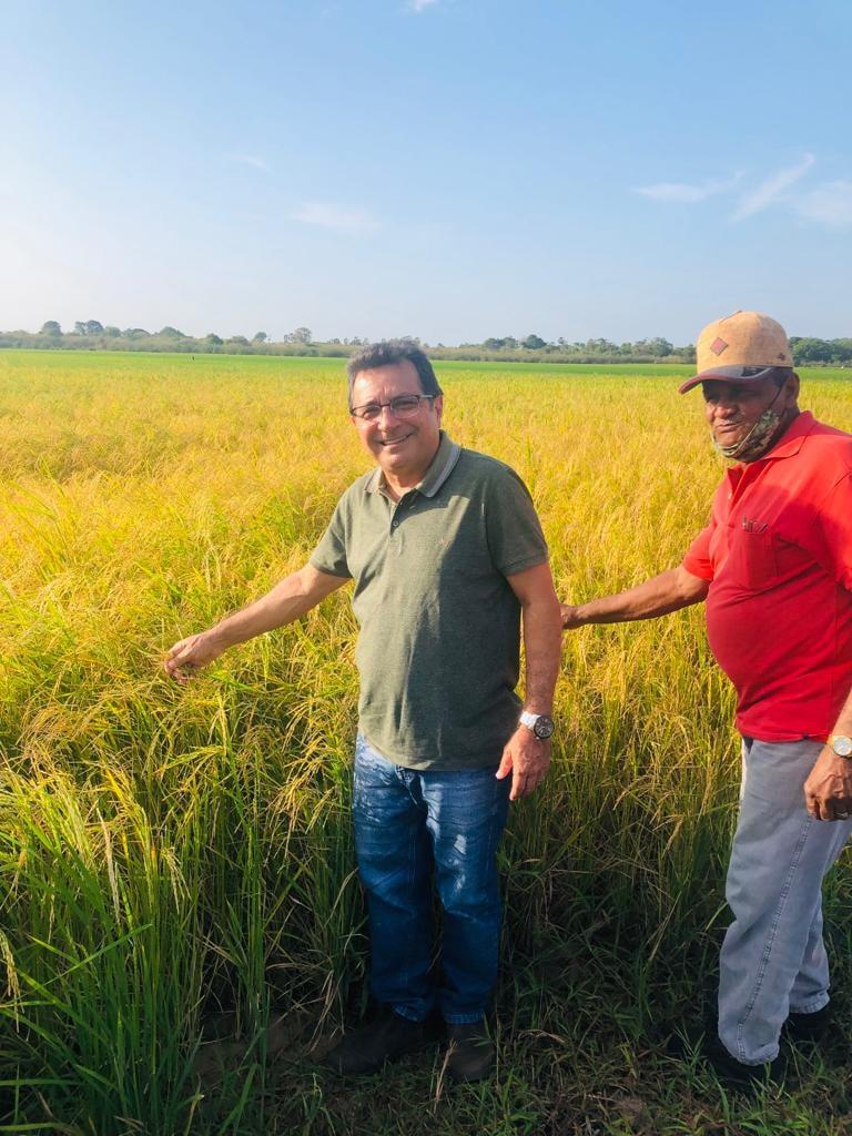 Prefeito Genival Bezerra visita campo de produção arroz - Imagem 1
