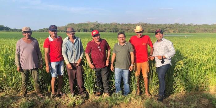 Prefeito Genival Bezerra visita campo de produção arroz