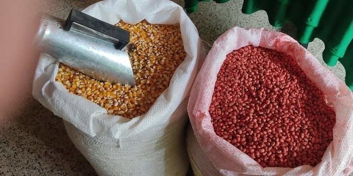 Prefeito João Luiz e deputada estadual Elisangela Moura entregam sementes para agricultures