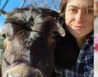 Mulher resgata animais vítimas de maus-tratos e já tem quase 200 pets
