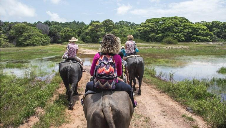 Brasil celebra Dia Internacional dos Guias de Turismo - Imagem 1
