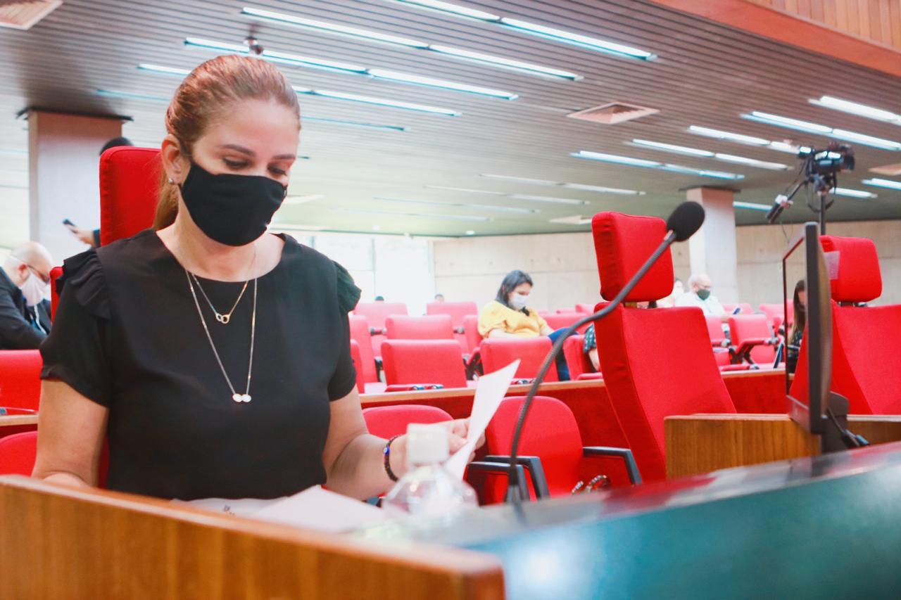 Deputada cobra Florentino sobre equipamentos de hospital do Verdão - Imagem 1